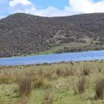 Royalla Solar Farm featuring Jinko Solar PV panels